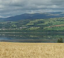 Dornach Firth Inverness Shire, Scotland United Kingdom. by Graeme Rouillon