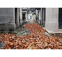 Autumn at Pere Lachaise Photographic Print