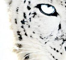 SNOW CAT * LIMITED EDITION * Sticker