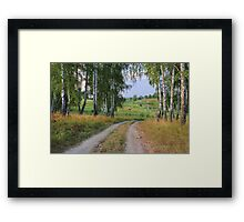 Early Evening in Late Summer Framed Print