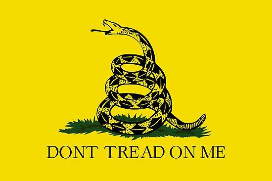 Gadsden Flag by Charles McFarlane