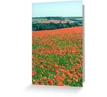 Fields of Poppies Compton Berkshire Compton Berkshire Greeting Card