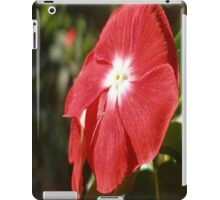 Close Up Of A Red Busy Lizzie Flower iPad Case/Skin