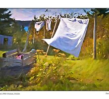 Airing Out, Petit Manan, Maine by Dave  Higgins