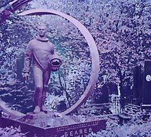 Cosmonaut Grave by Ginny Schmidt