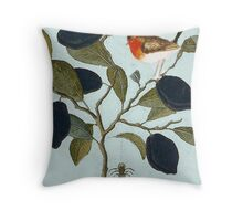 Robin and spider convo. Throw Pillow