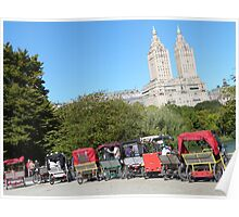 NYC Central Park Carriages Poster