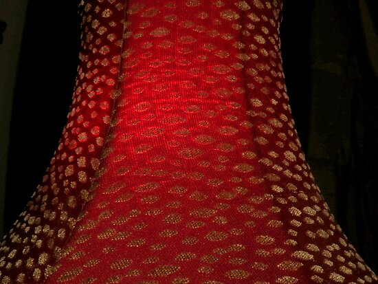 Red Lamp Shade by Diane Arndt