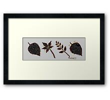 Fruit & Vegetables Leaves Framed Print
