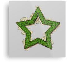 Fruit & Vegetable Green Star Metal Print