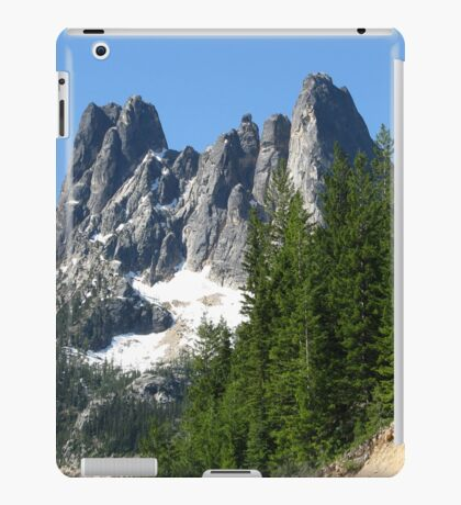 This Planet We Call Home iPad Case/Skin