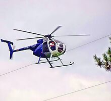 all in the power line of duty by vigor
