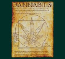 Vitruvian Cannabis by GUS3141592