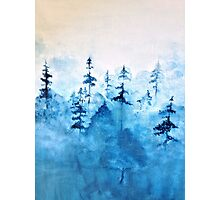 Blue Woods Photographic Print