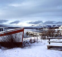 Atlin, British Columbia by Harry Snowden