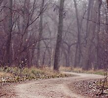 Misty Path by MWAC