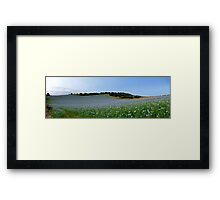 Downland Blues Framed Print