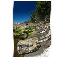 Shelf Life - West Coast Trail, Vancouver Island, Canada Poster