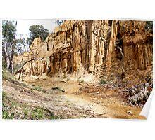 Golden Gully - Tambaroora NSW Australia Poster