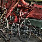 Vintage Wagons by Michael  Herrfurth