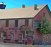 WINNEMUCCA HOTEL.. by DonActon
