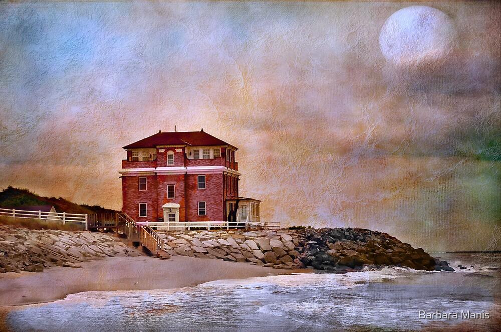 Ocean Front by Barbara Manis