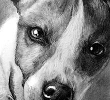 Dog Portrait Commission 1 Sticker