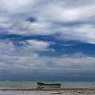 Lonely Boat - Coral Coast, Fiji by clickedbynic
