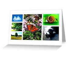 Living in Paradise Greeting Card