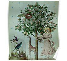 Mary Mary Poster