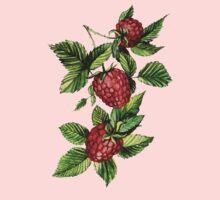 Raspberries Kids Clothes