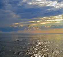 Sunsets On Lake Ontario Series by vincent wiegand