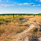Dirty Rural Road by GrishkaBruev
