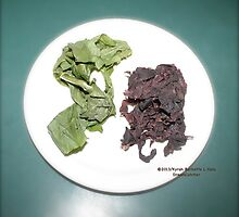 Plantain and seaweed  by DreamCatcher/ Kyrah Barbette L Hale