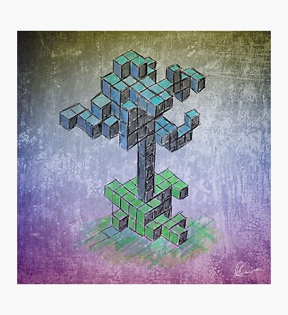 Abstract cube tree Photographic Print