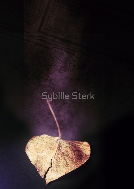 the world in a leaf by Sybille Sterk