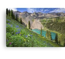 Colorado Wildflowers - Lower Blue Lake Beauty Canvas Print
