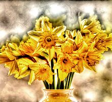 Daffs by Anthony Hedger Photography