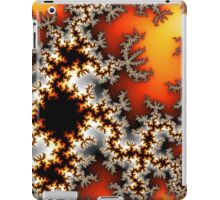 For the Love of Math iPad Case/Skin