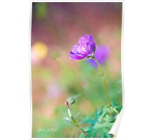 Proud Purple Cranesbill Poster