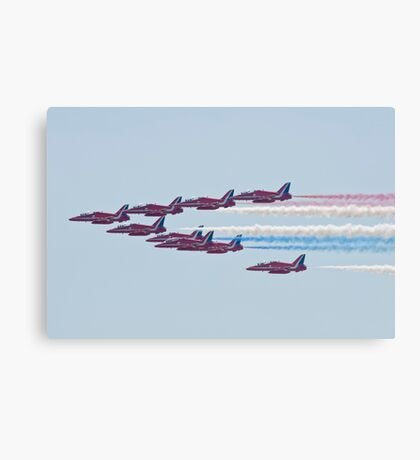In The Air  Canvas Print