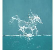 The Water Horse Photographic Print