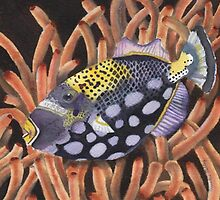 Handsome Fish by Christine Talley