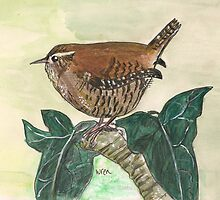 Wren on ivy leaves by Sam Burchell