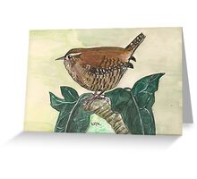 Wren on ivy leaves Greeting Card