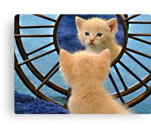 Mirror Mirror... Who's The Cutest Of Them All? Canvas Print