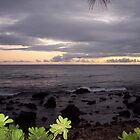 Hawaiian Sunset by CadburyKeepsake