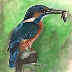 Kingfisher by Sam Burchell