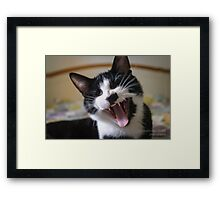 """..and then I bit his toes, it was hilarious!"" Framed Print"