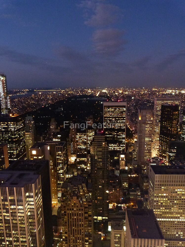 NYC Central Park at Night by FangFeatures